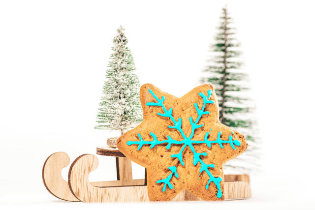 Gingerbread cookie in snowflake shape with sleighs on the background of snow and xmas trees