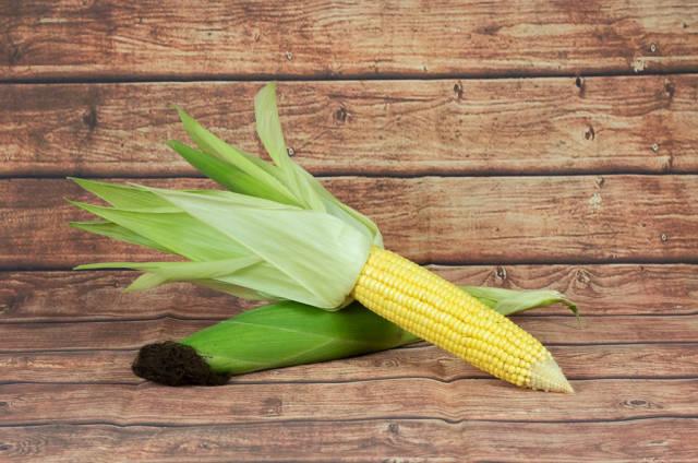 Geschälter und ungeschälter Maiskolben