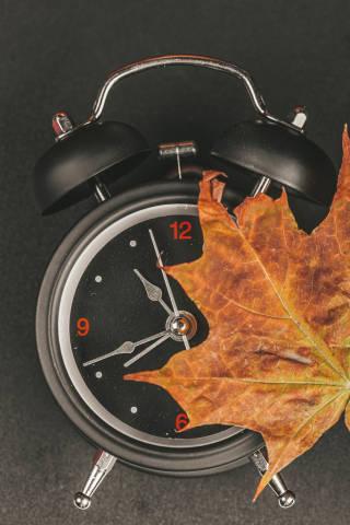 Black alarm clock with dry autumn maple leaf