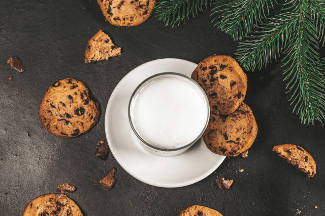 Traditional Christmas homemade cookies and glass of milk with Christmas tree branches