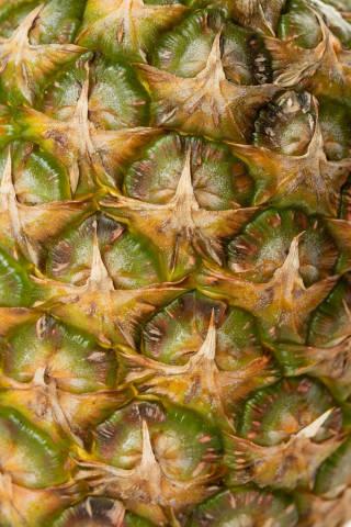 Pineapple bark in closeup macro image