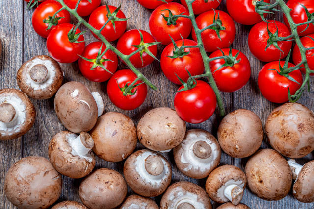 Ripe red tomatoes on branches with brown fresh mushrooms