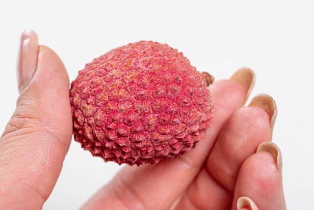 Red ripe litchi fruit in hand closeup