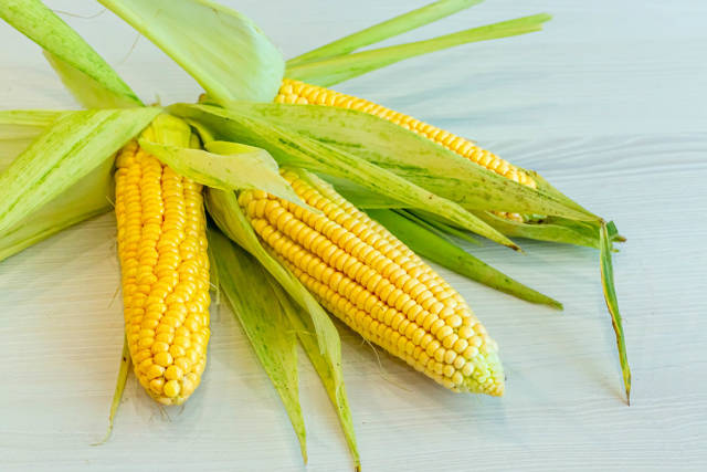 Fresh corn ears with leaves on white wooden background