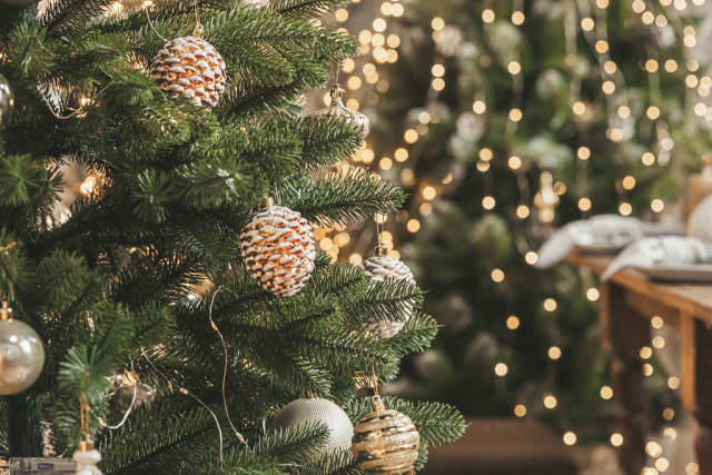 Christmas balls and cone decoration on christmas tree, close up