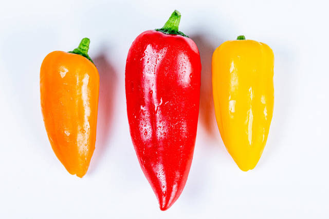 Orange, red and yellow bell peppers on white, top view