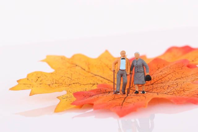 Senior couple standing on autumn leaf