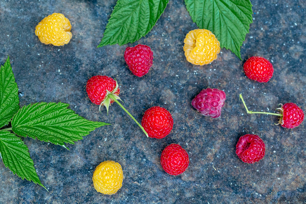 Yellow and red raspberry berries with leaves