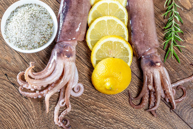 Fresh octopus or squids raw on wooden board with ingredients