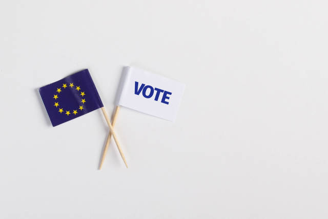 The European flag and white flag with vote text