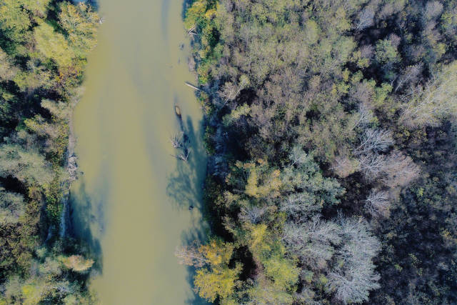 Aerial view of Arges river, trees on both sides of the river, Romania