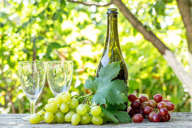 Two glasses, a bottle and fresh grapes with leaves on a blurred background of nature
