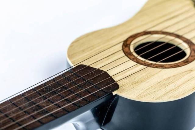 Nahaufnahme von auf Gitarre gespannten Gitarrensaiten vor weißem Hintergrund
