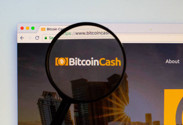 Bitcoin Cash logo on a computer screen with a magnifying glass