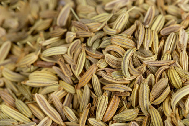 Dried fennel seeds background, top view