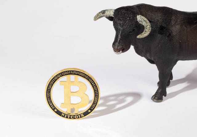 Black bull with golden Bitcoin