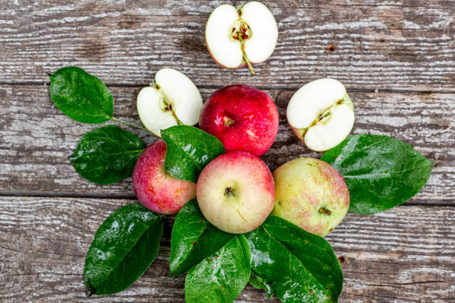 Ripe red and green apples with leaves on grey wooden background