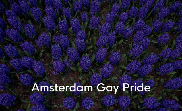 Blaue Hyazinthen-Blumen im Keukenhof Garten mit der Aufschrift Amsterdam Gay Pride, einem LGBT Festival in Europa
