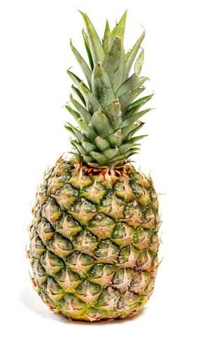Eine frische, große Ananas im weißen Hintergrund