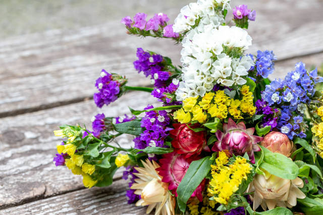 Colorful flowers of immortelle on an old wooden background