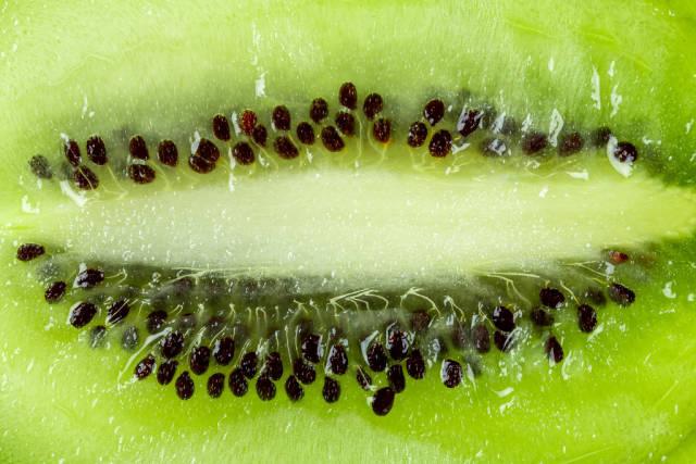 Closeup cut green kiwi background
