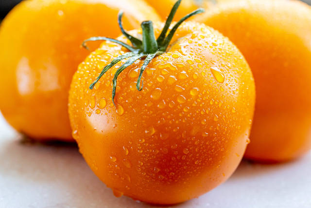 Ripe yellow tomatoes with water drops