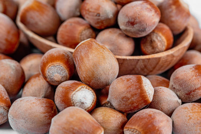 Whole hazelnuts with shell background