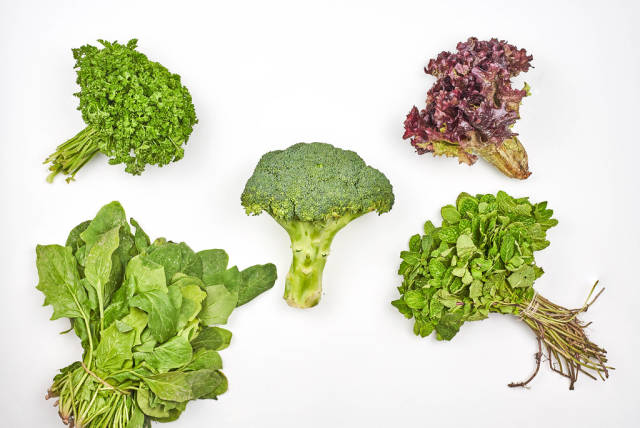Top view of various leafy greens on white