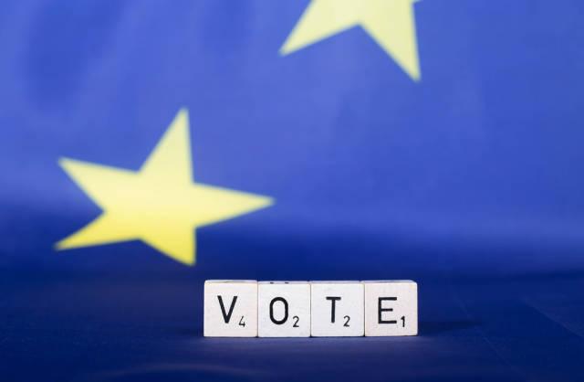 European Union parliament election