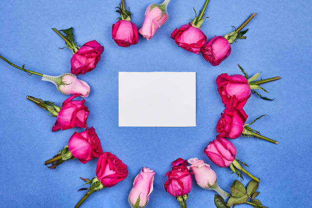 Beautiful pink roses placed in a circle with a blank card in the center