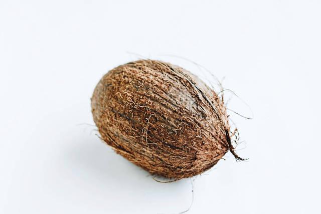 Kokosnuss vor weißem Hintergrund