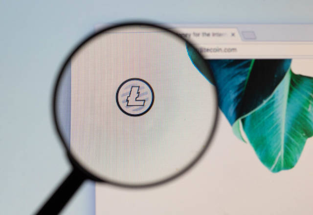 Litecoin logo on a computer screen with a magnifying glass
