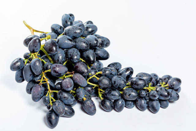 Bunch of fresh blue grapes on white background