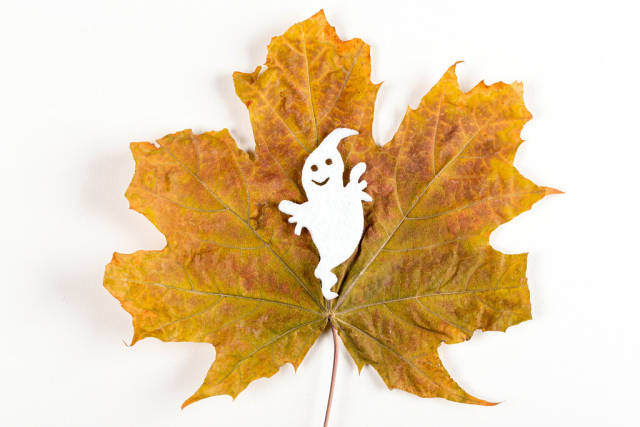 Halloween ghost on dry autumn maple leaf
