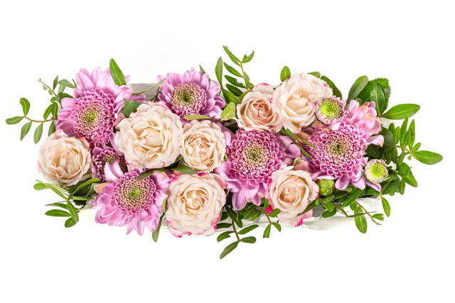 Top view of fresh pink and purple flowers on white background