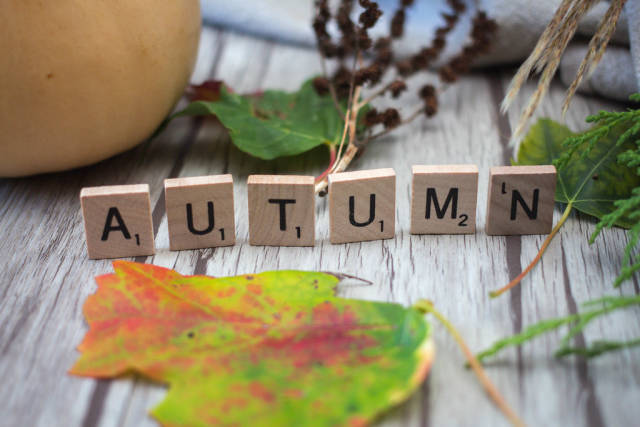 autumn Letters with leafs in the Background