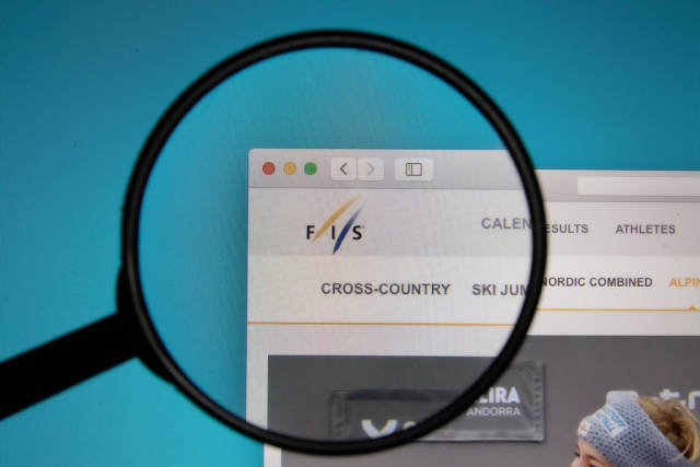 FIS logo on a computer screen with a magnifying glass