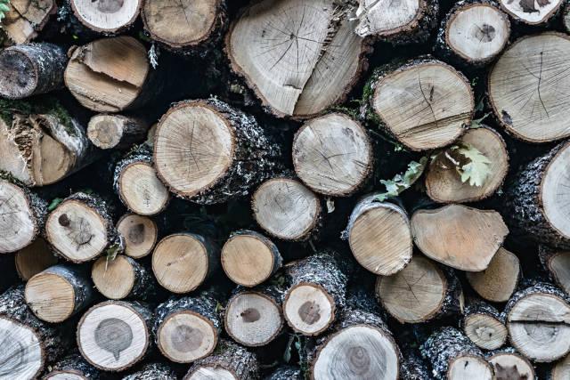 Nahaufnahme eines Stapels Brennholz
