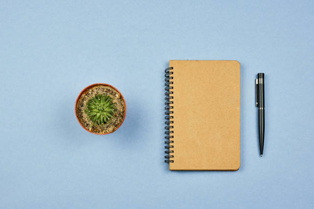 Flat lay of a diary with home plant