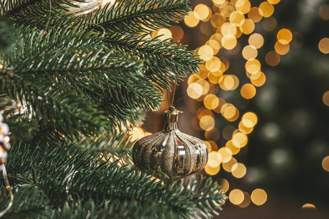 Close-up of branches of a christmas tree with a glass toy on a golden background of glowing garlands
