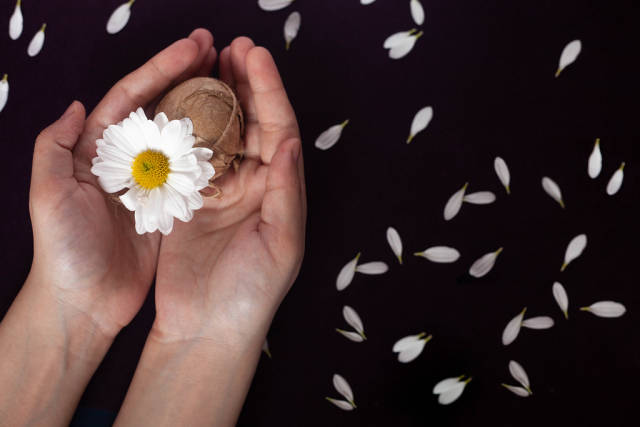 Womans hand holding decorated Easter egg with a white flower on black background