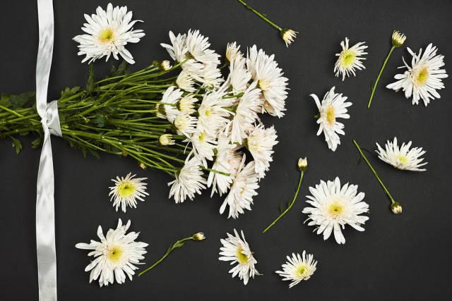 Beautiful white flowers background