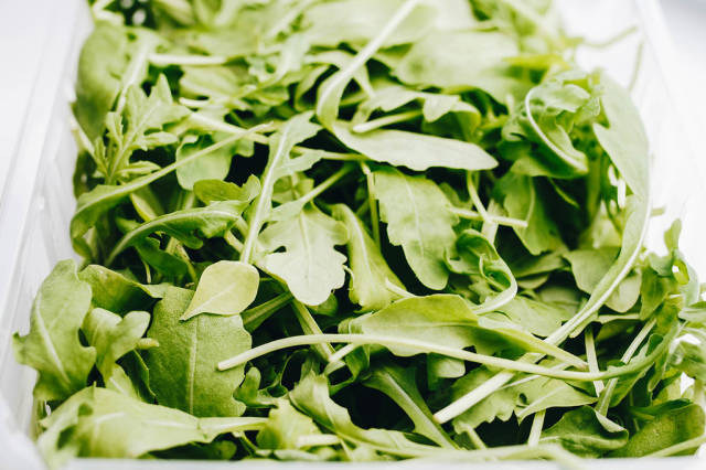 Close up of fresh rucola leaves. Close up