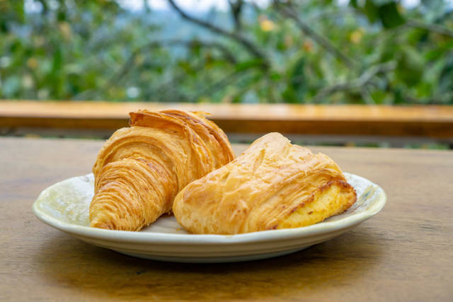 Croissant and Pastry on a White Plate with Trees and Nature in the Background