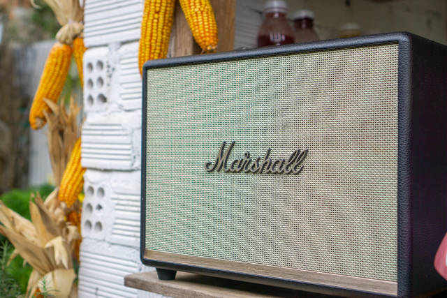 Marshall Loudspeaker with Corn on the Cob in the Background