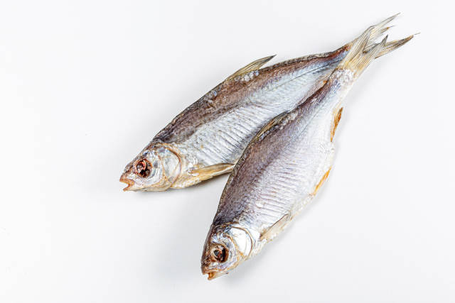 Dried salted roach fish on a white background