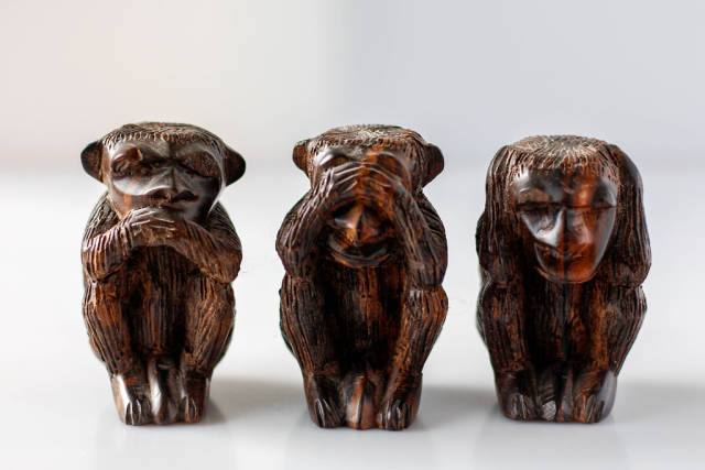 🙊🙈🙊 Three Monkeys  on a white background