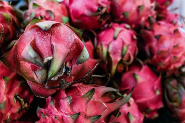Close up shot of dragon fruits
