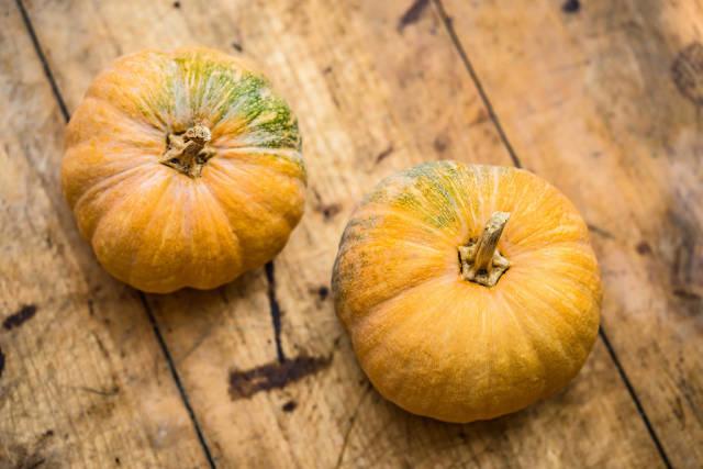 High view on pumpkins