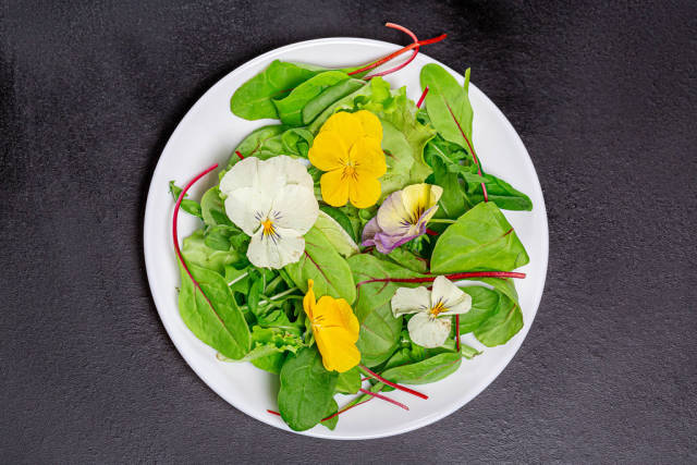 Top view light vegetarian salad with leaves and flowers on black background